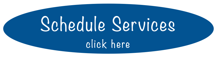 Schedule Services button